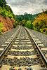 Early Autumn Hike Along The Tracks