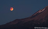 Blood Moon & Shasta