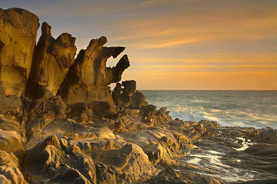 Salt Point State Park, has many unusual Tafoni sandstone rock formations like this one. Mars hasn't had water for 3 billion years, but this is what I imagine an ancient Martian ocean might look like. But this is real and here now at Salt Point State Park, 2 hours north of San Francisco. This place is covered with these formations! This rock face is only 1-2 feet thick.