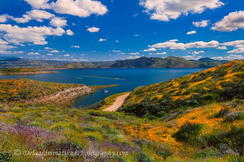 20170326_Diamond Valley Lake_0772