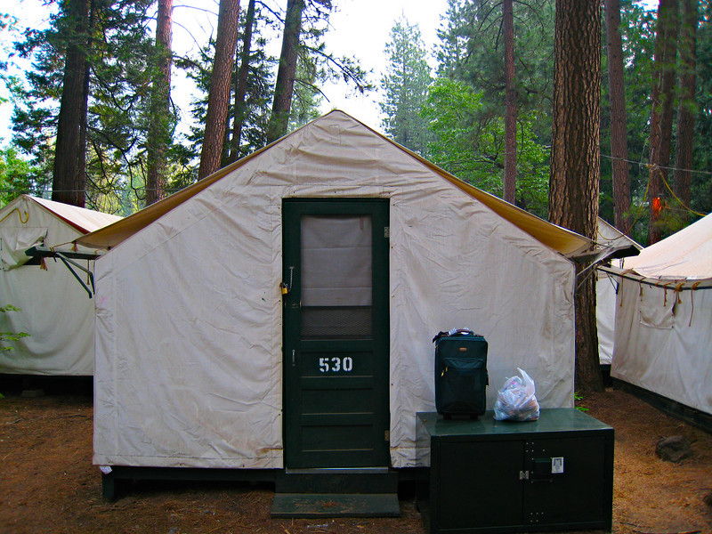 """My tent.  The big green box is the """"Bear Box.""""  Anything edible or with any sort of smell has to go into the box at night.  If you leave anything in your car and a bear goes for it, you're in trouble with the Park Service."""