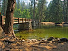 Bridge over the Merced River at the Housekeeping Camp.