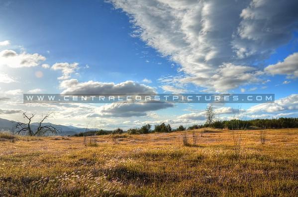 ca-valley_6128