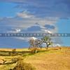 carrizo-plains-shell-creek-rd2-6153