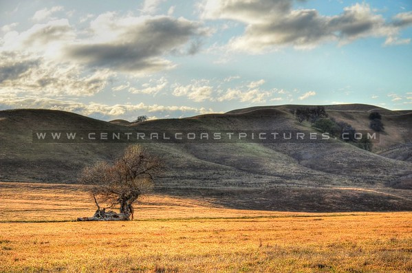 ca-valley_6172
