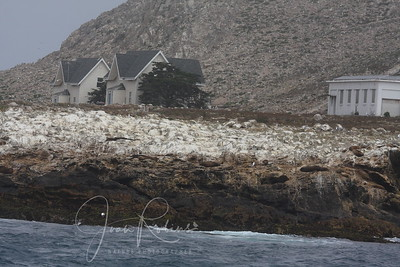 Only Marine Biologists could live here . . .