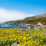 Beautiful summer coastal landscape. Garrapata State Park and beach, Big Sur, California, USA.