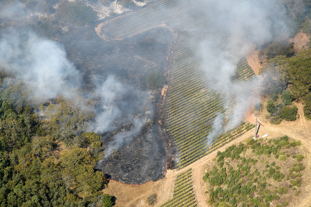 . Smoke rises near a vineyard as a wildfire burns in the hills east of Napa, Calif., Monday, Oct. 9, 2017. Wildfires whipped by powerful winds swept through Northern California sending residents on a headlong flight to safety through smoke and flames as homes burned. (Michael Short/San Francisco Chronicle via AP)