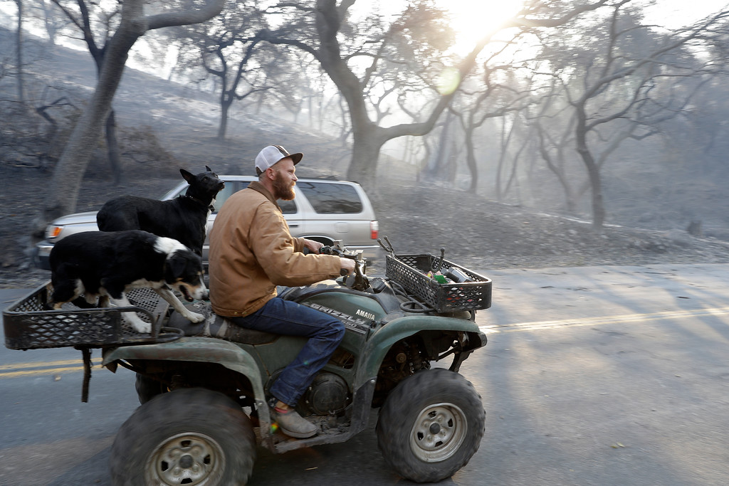. A man drives an all-terrain vehicle along a fire-ravaged Soda Canyon Rd., Monday, Oct. 9, 2017, in Napa, Calif. (AP Photo/Marcio Jose Sanchez)