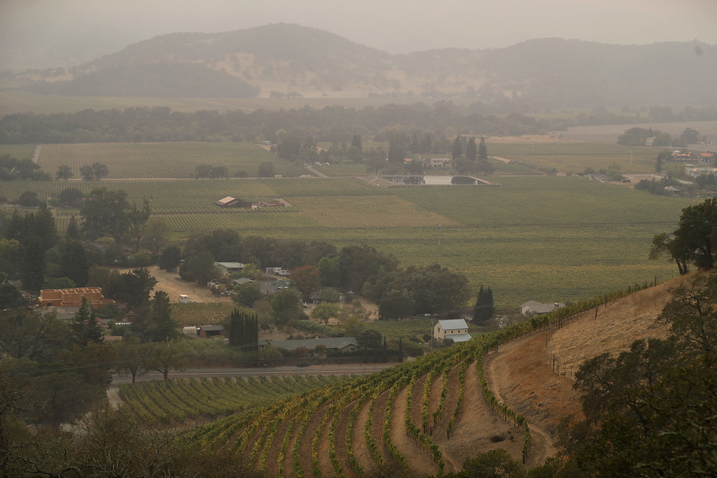 . Vineyards are covered in smoke from a wildfire Monday, Oct. 9, 2017, in Napa, Calif. (AP Photo/Marcio Jose Sanchez)