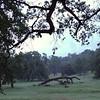 Ahwahnee Hills Regional Park, California