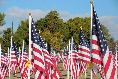 November 2015 Merced Field of Honor
