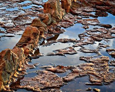 Titdepool, Abalone Cove Preserve