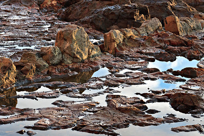 Abalone Cove Preserve