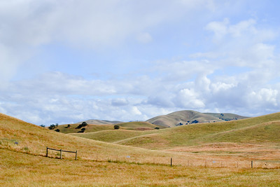 Vasco Road, Livermore, CA