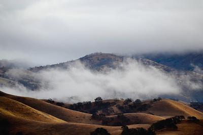 Del Valle - January Mist