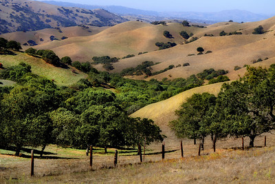 View from East Ridge Trail, just past the branding pen.    (EBRPD - Del Valle)