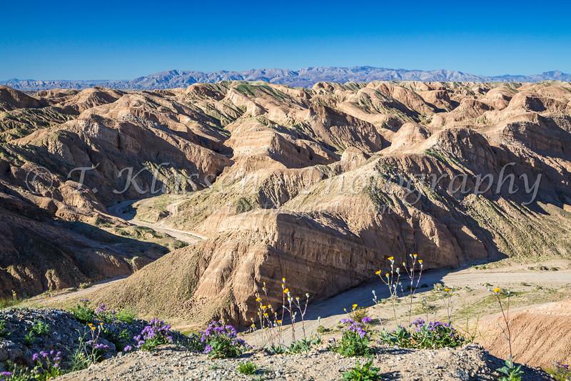 The desert badlands of the Anza Borrego Desert State Park, near Borrego Springs, California, USA.