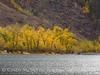 Convict Lake in fall, Mammoth Lks CA (8)