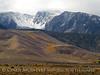 Aspen ribbon, Mammoth Lakes CA (2)