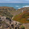 Cambria coast 2
