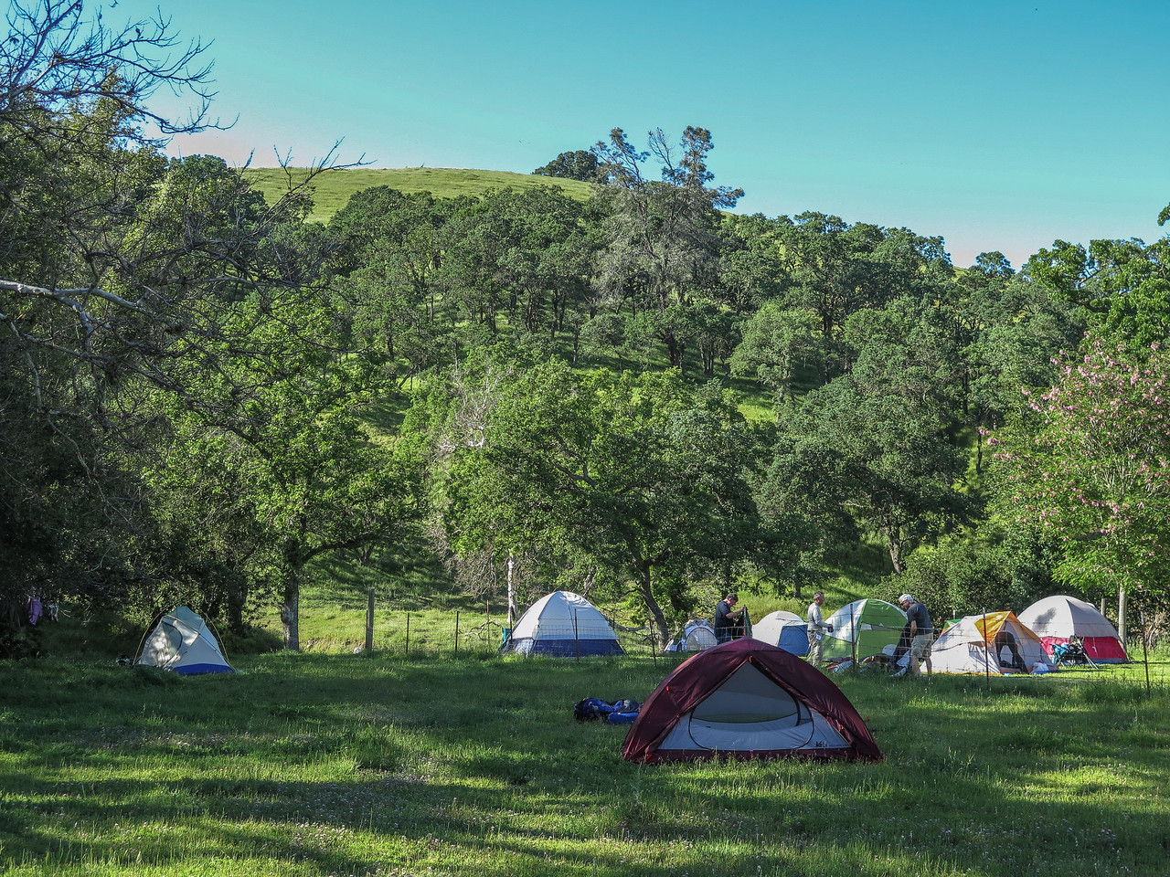 Day 2 Campsite