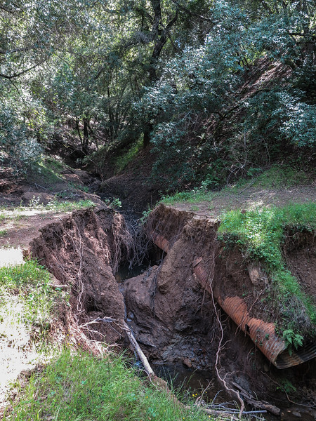 Day 2 - Washed Out Culvert