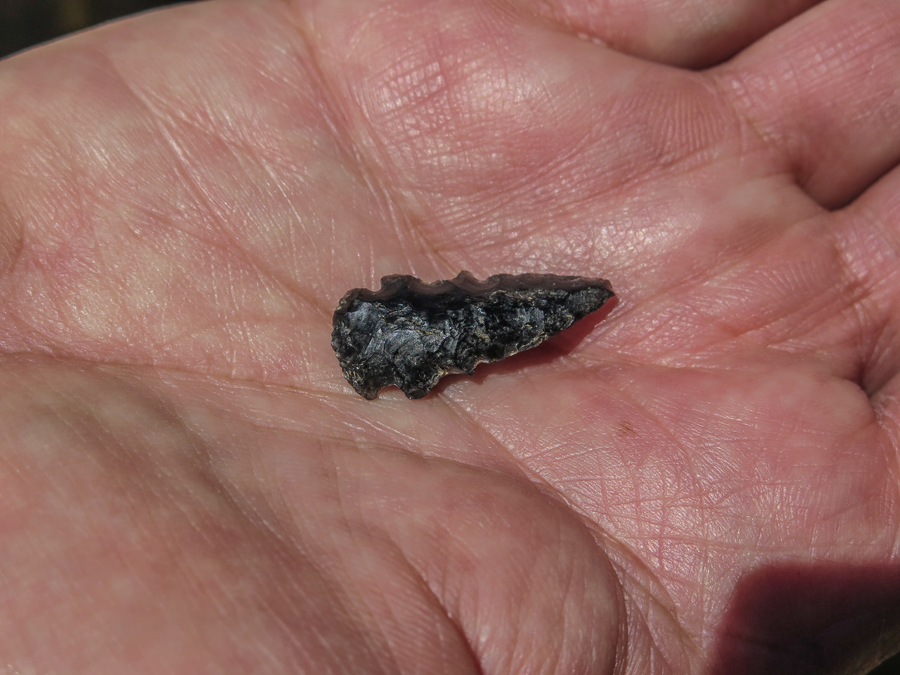 Day 2 - Steve Finds an Arrowhead
