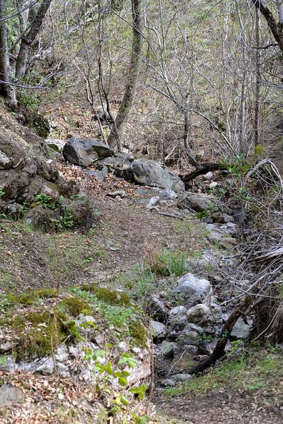 Bottom of the Ravine