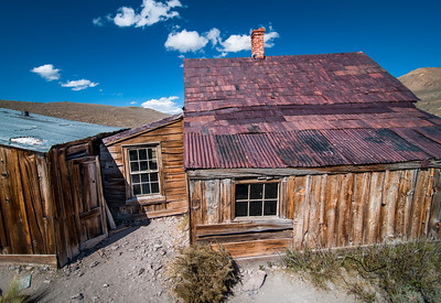 Bodie Roof Study I