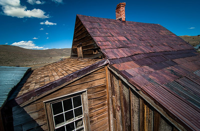 Bodie Roof Study II