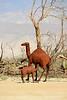 Borrego Springs CA sculptures by Ricardo Breceda (7)