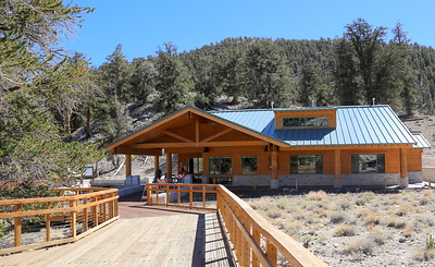 Bristlecone Pines Schulman Grove visitor center