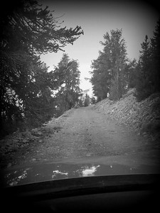 Road to Patriarch Grove, Bristlecone Pines