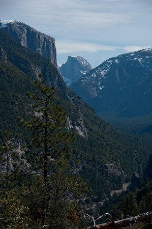 CA 2010 - Yosemite