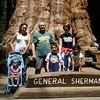 """Sequoia National Park<br /> """"General Sherman""""<br /> groesste Baum der Welt."""