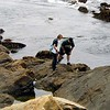 Point Lobos<br /> South Plateau Trail<br /> Jenny und Cliff erforschen Tide Pools.