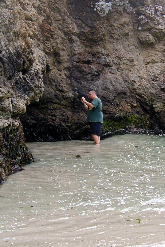Point Lobos<br /> China Cove Beach<br /> Dann erforschen sie die andere Seite.<br /> Cliff macht ein Bild von der Hoehle.