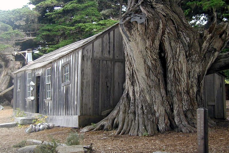 Point Lobos<br /> Whaler's Cabin