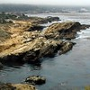 Point Lobos<br /> South Plateau Trail
