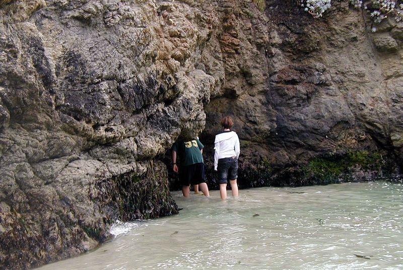 Point Lobos<br /> China Cove Beach<br /> Dann erforschen sie die andere Seite.<br /> Da ist eine Hoehle.