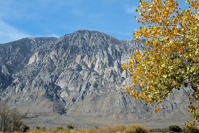 2016 Eastern Sierras Bishop Area, Mc Gee Canyon