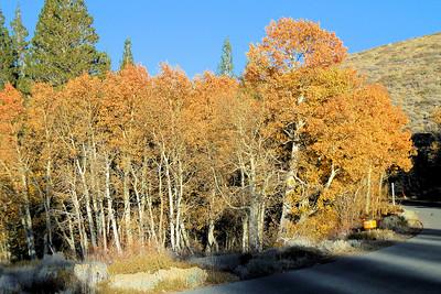 2016 Eastern Sierras HWY 89 and 395