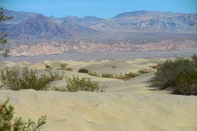 Sand Dunes and Devil's Cornfield