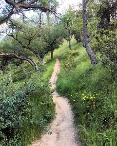 Frank Raines Regional Park, Del Puerto Canyon, California