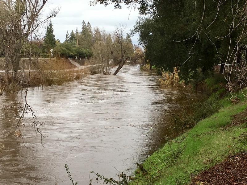 Bear Creek Merced between G St and  McKee.