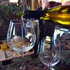 Lompoc California, Wine Tasting, Clos Pepe Estate