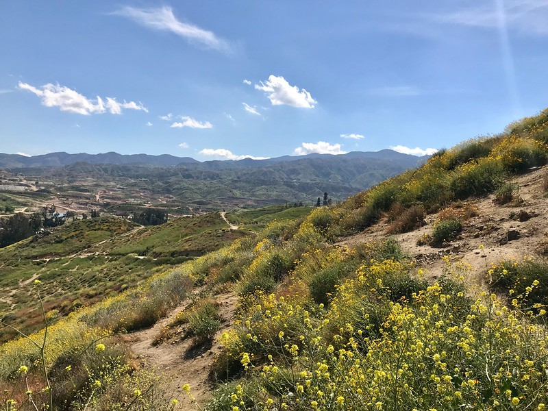 Walker Canyon Nature Preserve at Lake Elsinore