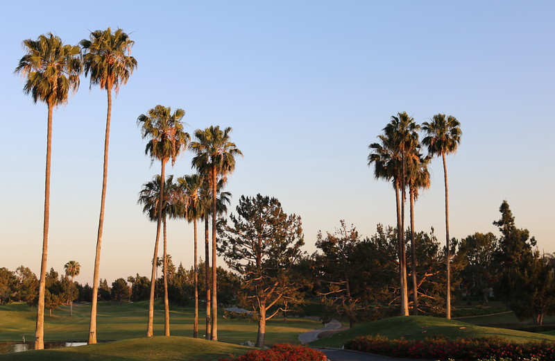 Tustin Golf Club