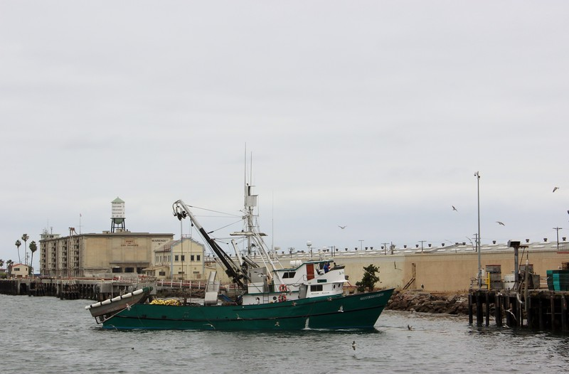 Fishing Boat Arrives at the Port of Los Angeles